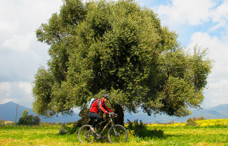 September in Sardinia, where to go. Bike tour