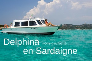 delphina-blog-pacchetti-fr
