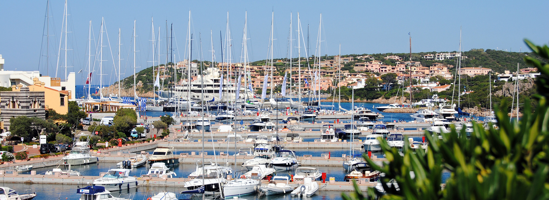Delphina The Wine Festival returns Porto Cervo  Sardinia - Italy