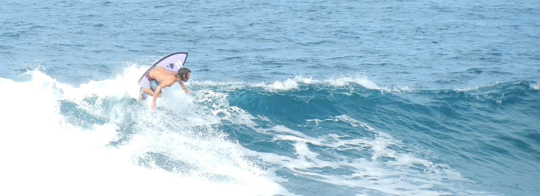 Delphina Riparte la stagione del surf nel Nord Sardegna  Sardegna